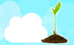 What_startups_need_to_know_before_choosing_a_cloud_based_technology
